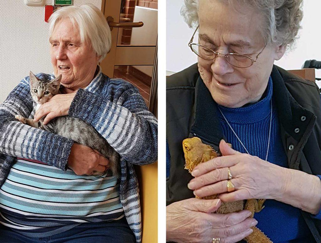 Tiergestützte-Therapie-Senioren